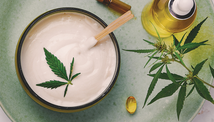 More Knowing About CBD Products